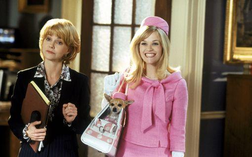 Blondin kosto -elokuvat saavat jatkoa: Millainen on nelikymppinen Elle Woods?