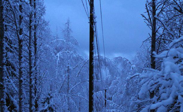 Ensi yönä on luvassa kovaa tuulta ja syytä varautua sähkökatkoihin.