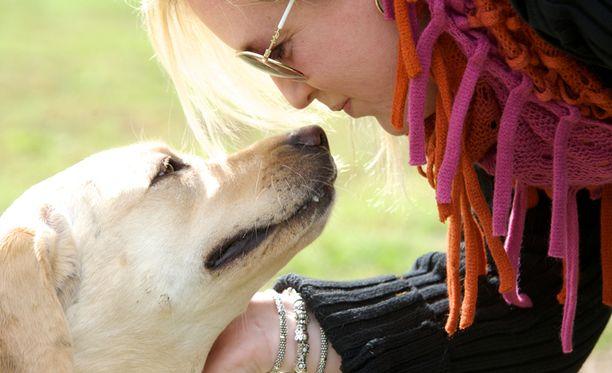 Ihmisäänet aktivoivat saman alueen sekä ihmisten että koirien aivoissa.