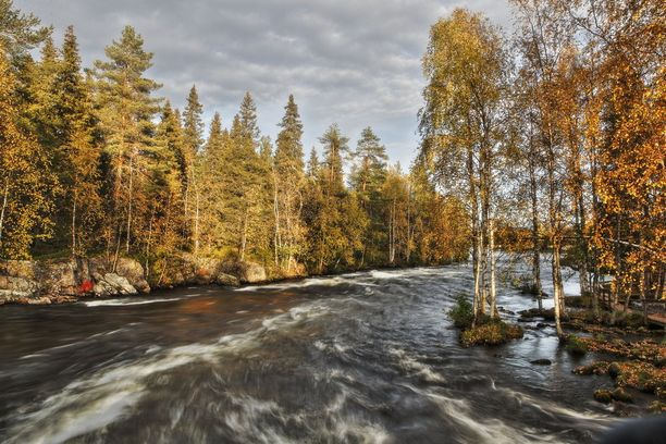 Seppo Mustosella on tapana sunnuntaiaamuisin pyöräillä Käylänkoskelle ihailemaan idyllistä maisemaa.