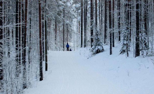 Näin kauniissa talvimaisemassa tapaninpäivänä hiihdeltiin viime vuonna.