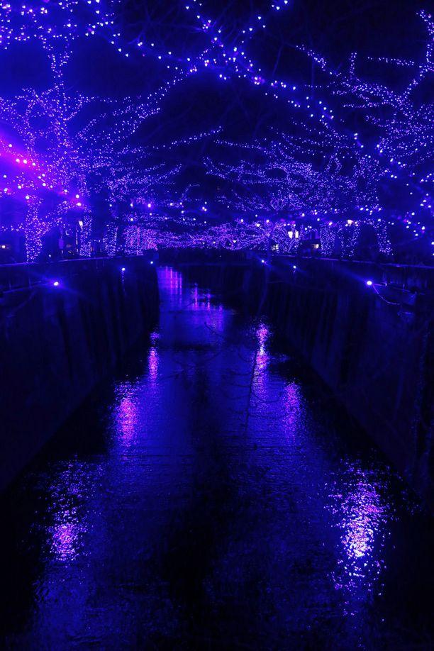 Meguro-joki hurmaa talvisaikaankin. Joulukuussa 2014 se koristeltiin sinisin led-valoin.
