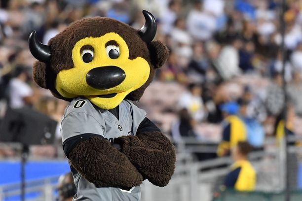 Colorado Buffaloesin Chip-maskotti sai melkoisen kivuliaan osuman.