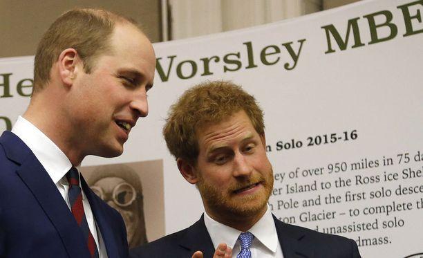 Prinssit William ja Harry ottivat osaa veteraanitapahtumaan.