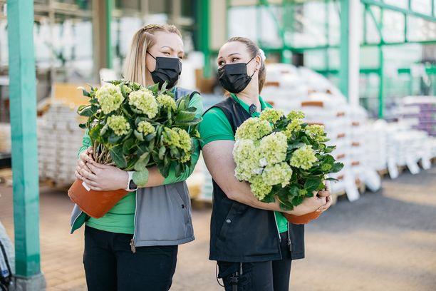 Marika Kallioväli ja Jenni Hyyppä toivottavat tervetulleeksi Hyllykallion Prisman uudistuneelle kesäpihalle.