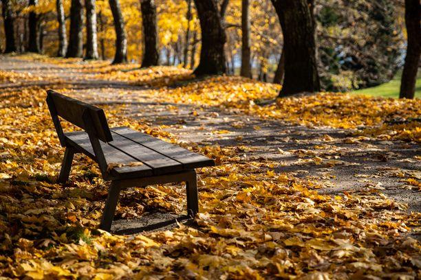 Suomen etelä- ja keskiosissa lämpö hellii ulkoilijoita vielä lokakuun lopussakin.
