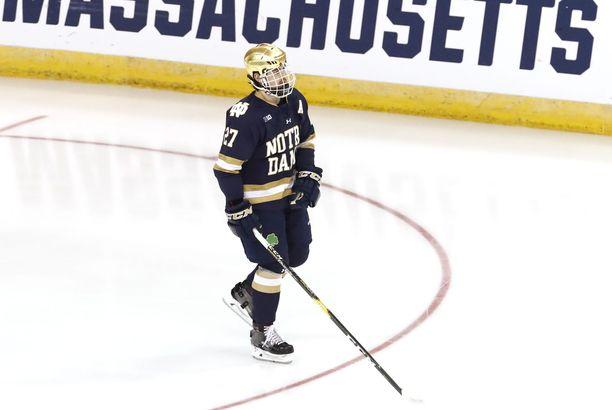 Bobby Nardella pelasi vielä toissa kaudella Notre Damen yliopiston riveissä. Viime kaudella hän edusti AHL-seura Hershey Bearsia.