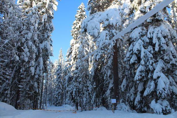 Moni suomalainen odottaa lunta jouluksi.