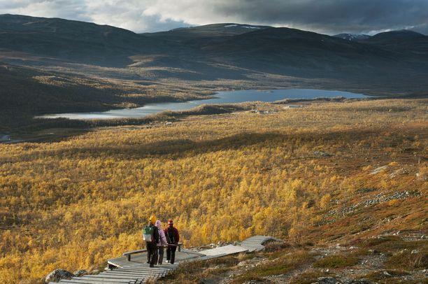 Mallan luonnonpuisto on Suomen vanhin luonnonsuojelualue.