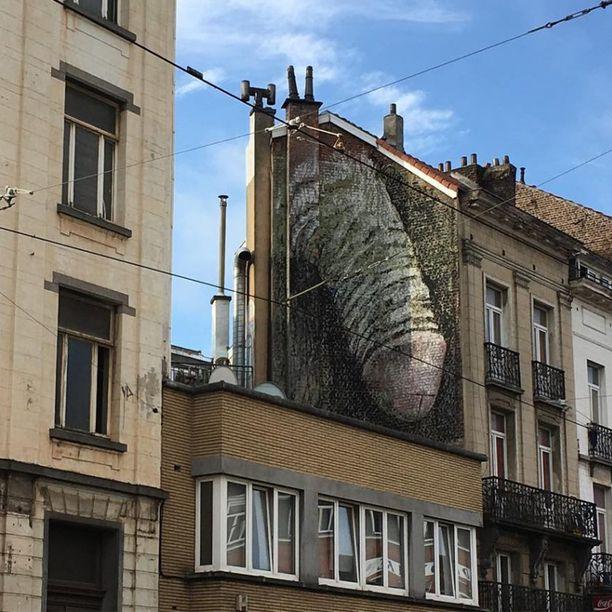 Jättikokoinen penismaalaus ilmestyi seinään vilkkaalla liikekadulla.