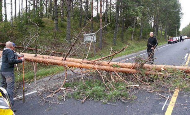 Tielle kaatunut puu katkaisi liikenteen Konginkankaalla.