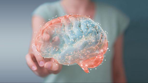 Jos haluat pysyä skarppina ja toimintakykyisenä mahdollisimman pitkään, harrasta aivoja haastavaa liikuntaa, kuten tanssia tai pallopelejä, sillä ne lisäävät hermosoluja sisältävän harmaan aineen määrää.