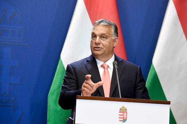 Unkarin pääministeri Viktor Orbán on haalinut häikäilemättä valtaa ja varallisuutta omalle lähipiirilleen.