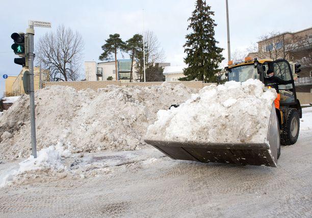 Lunta, lunta ja lunta. Sitä on satanut alkuvuonna Etelä-Suomessa reipas määrä.