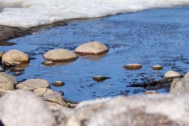 Suomessa on jo monin paikoin hyvin keväisen oloista. Kuva on viime maaliskuun loppupuolelta.