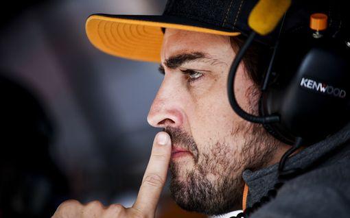 BBC: Fernando Alonso, 38, palaa F1:een!