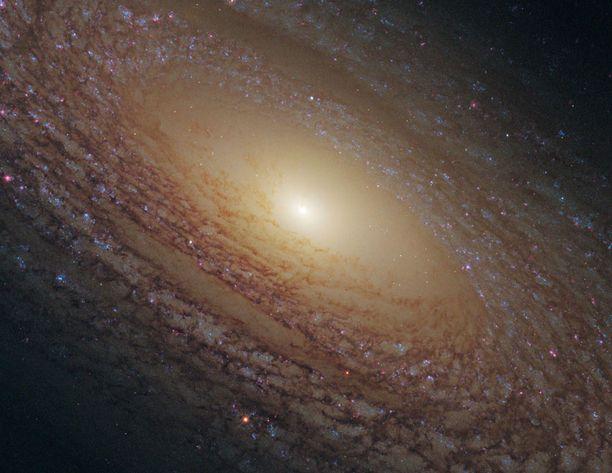 Onko siellä elämää? Hubble-teleskoopin ottama kuva kierteisgalaksista NGC 2841.