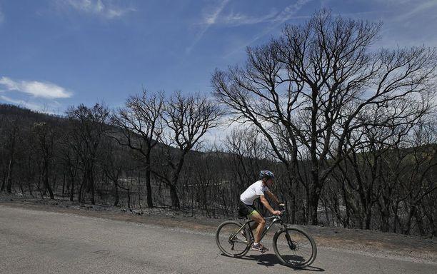 Raporttien mukaan noin 12 000 ihmistä jouduttiin evakuoimaan tulipalojen takia.