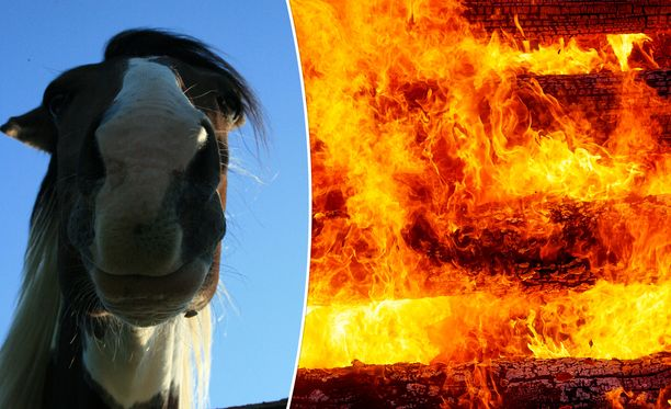 Päivystävän palomestarin Mikko Thusbergin mukaan oli minuuteista kiinni, että hevostilan tulipalon vahingot olisivat olleet paljon suuremmat. Kuvituskuva.