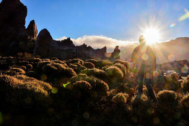 Teiden luonnonpuisto Teneriffalla on kokemisen arvoinen paikka.