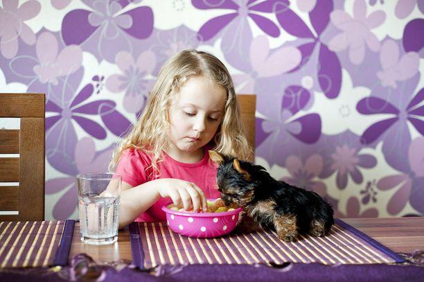 Koiran ja ihmisen ei kannata syödä samalta lautaselta.