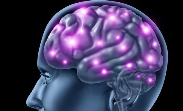 Aivojen toiminnan ymmärtäminen on lähes mahdottomana pidetty tavoite.