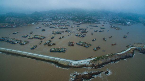 Liikakalastus on merkittävä ongelma Koillis-Aasian merillä. Kuvassa kiinalaisia kalastusaluksia Wenlingin alueella.