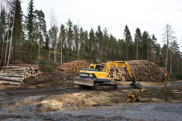 Suomen metsien hakkuutasosta on käyty kiivastakin keskustelua ns. hiilinieluvelvoitteiden vuoksi.