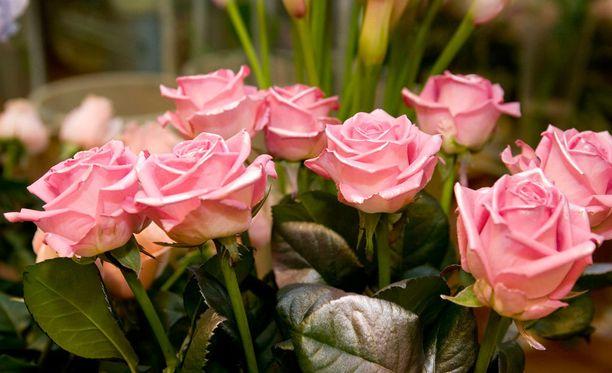 Mies jätti vaaleanpunaiset ruusut vanhukselle, mutta otti tämän lompakosta 80 euroa. Kuvituskuva.
