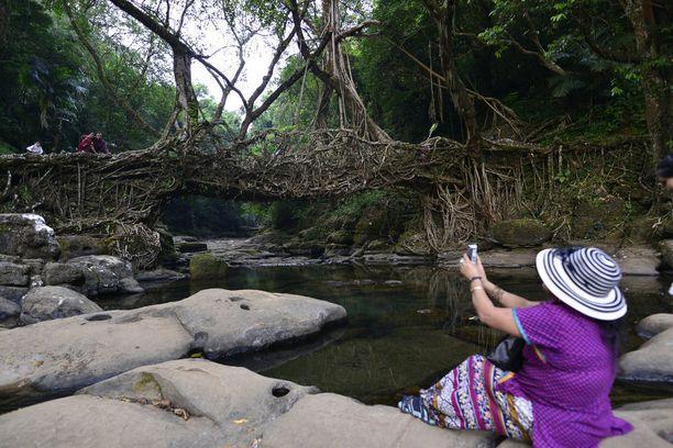 Erikoisista silloista on muodostunut nähtävyys, jonka seudulla vierailevat matkailijat haluavat ikuistaa mielellään.