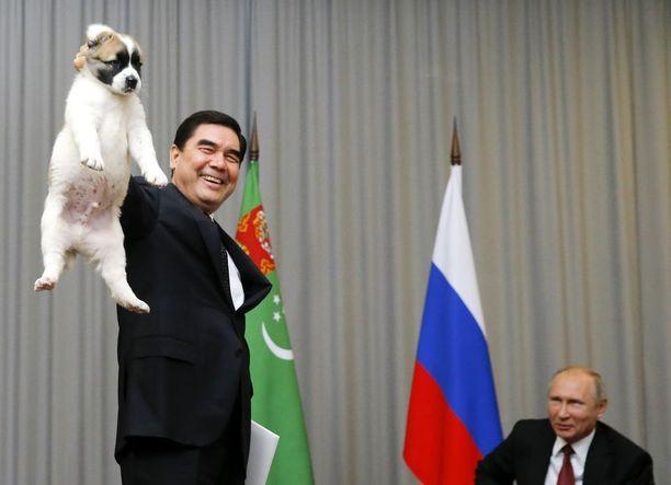 Putin sai mieluisan lahjan Turkmenistanin presidentiltä tapaamisen yhteydessä Sotshissa.
