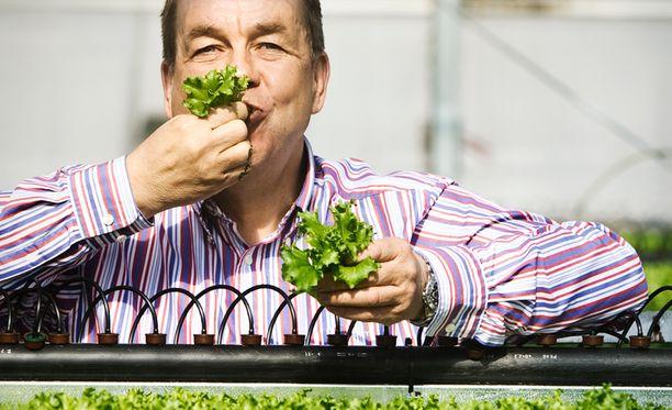 Honkajokelainen kasvisyrittäjä Timo Rapila on tehnyt miljoonatiliä.