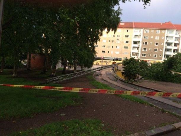 Sähkötolppa kaatui Vallilan puiston vanhojen puiden päälle myrskyn seurauksena.