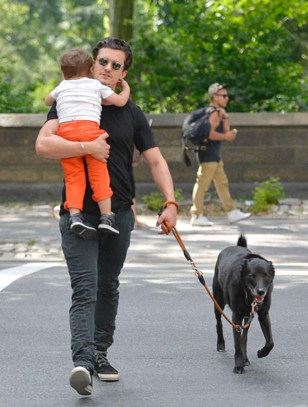 Orlando Bloom ja hänen koiransa Sidi kuvattiin usein yhdessä. Tämä kuva on vuodelta 2013.
