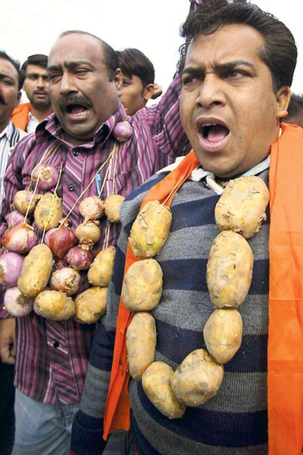 POTUT KAULASSA Hindu Shiv Sena -puolueen aktivistit koristautuivat Intiassa hallituksen vastaiseen mielenosoitukseen komeilla juureksilla.