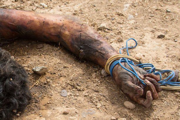 Irakilaismies poseerasi kuvassa kuolleen vihollistaistelijan kanssa, mutta näyttö ei riittänyt tuomioon asti. Kuvituskuva.