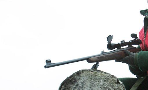 Poliisi tutkii Muoniossa mahdollista metsästysrikosta. Kuvituskuva.