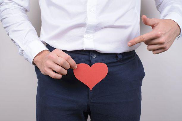 Testosteroni muodostuu kiveksissä. Sieltä hormoni kulkeutuu verenkierron avulla eri puolille elimistöä.