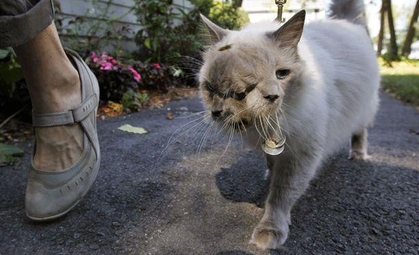 Frank ja Louie eli kehitysvammastaan huolimatta pitkän ja terveen elämän.