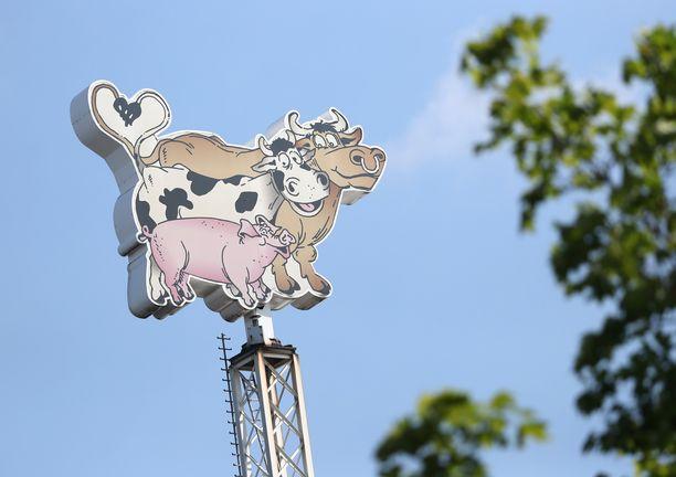 Koronateurastamolla Rheda-Wiedenbrueckissä on teurastettu päivittäin 20 000 porsasta.