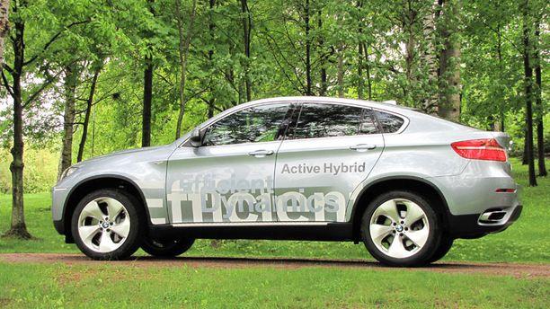 JYKEVÄ Vienosti vihertävä hybridi on jyhkeä näky alkukesän heleydessä.