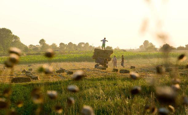 albanian maaseudulla perinne elää yhä.