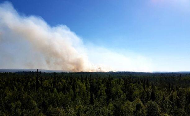 Maastopalo riehuu vain satojen metrien päässä Suomen rajalta. Se saattaa levitä Suomen puolelle viikonlopun aikana.