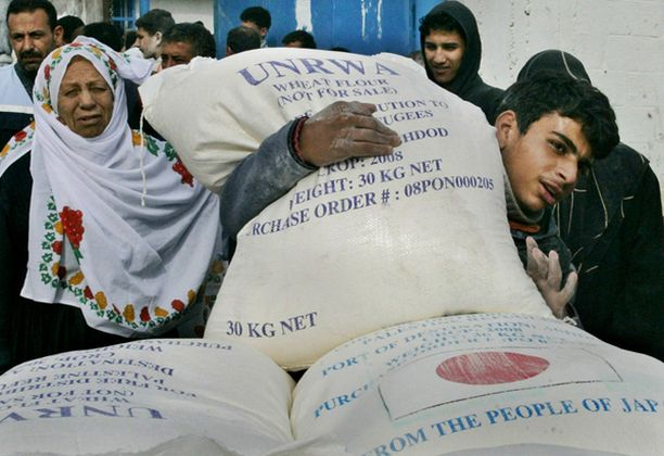 Palestiinalaismies kantaa UNRWA:n tuomaa jauhosäkkiä Gazan kaupungissa ennen kuin avustustoiminta keskeytettiin torstaina.