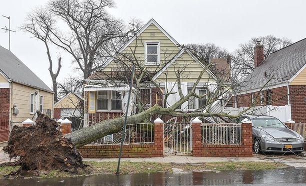 Viisi ihmistä on saanut surmansa myrskyn kaatamista puista. Heistä kaksi oli lapsia, jotka kuolivat puun kaaduttua heidän kotinsa päälle.