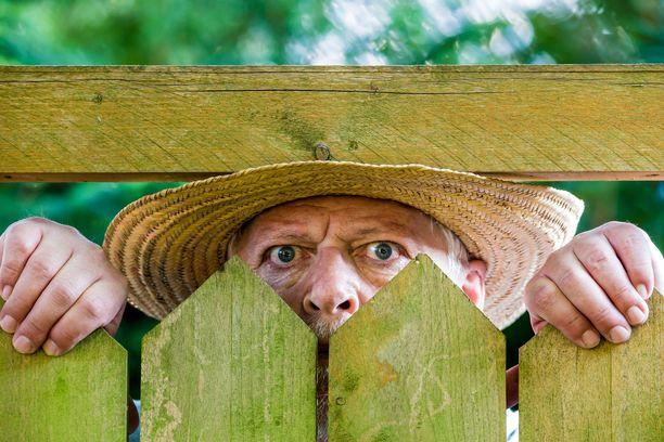 Seuraavia ohjeita noudattamalla saat nurmikon, josta naapurikin on kateellinen.