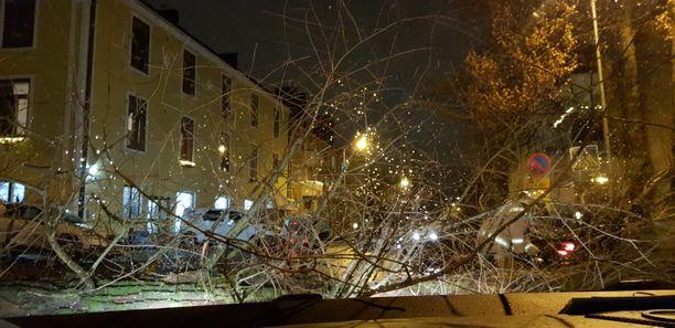 Pelastuslaitos oli pian paikalla raivaamassa puuta.