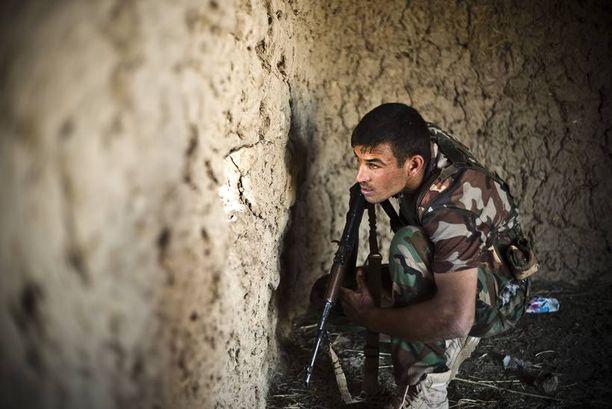 Irakilaisjoukot taistelivat kuun alussa Isisiä vastaan Tikritin alueella, Mqashifan kylässä.