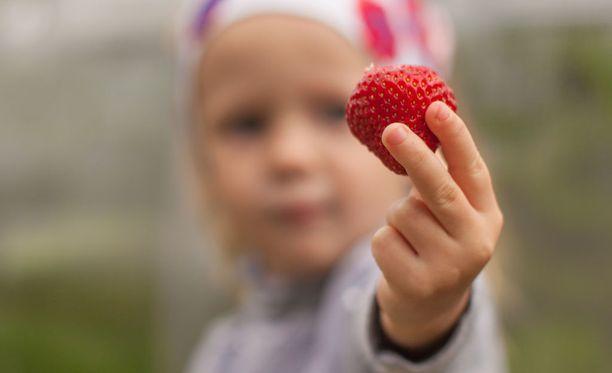 Lapselle pitäisi tarjota joka aterialla marjoja, vihanneksia, juureksia tai hedelmiä.