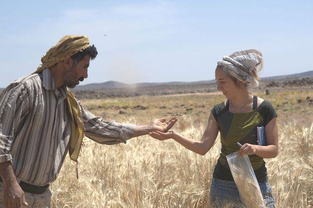 Kööpenhaminan yliopiston tutkija Amaia Arranz-Otaegui ja tutkimusavustaja Ali Shakaiteer ihmettelevät löydöstä Jordaniassa.